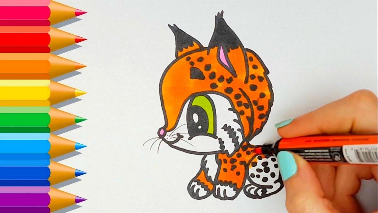 Como dibujar un Lince Kawaii 💙 How to draw a cute lynx, dibujos de Un Lince, como dibujar Un Lince paso a paso