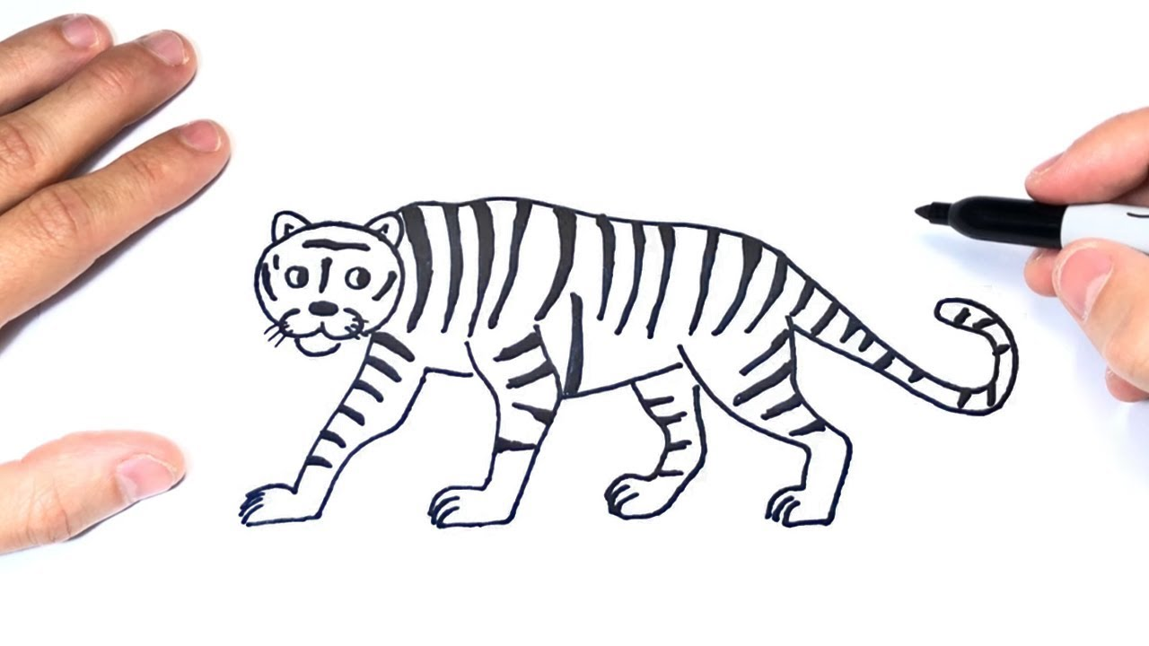 Cómo dibujar un Tigre Paso a Paso  Dibujo de Tigre, dibujos de Un Jaguar, como dibujar Un Jaguar paso a paso