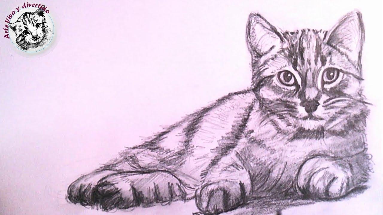 Como Dibujar un Gato Realista a Lapiz Paso a Paso, dibujos de Un Gato A Lápiz, como dibujar Un Gato A Lápiz paso a paso