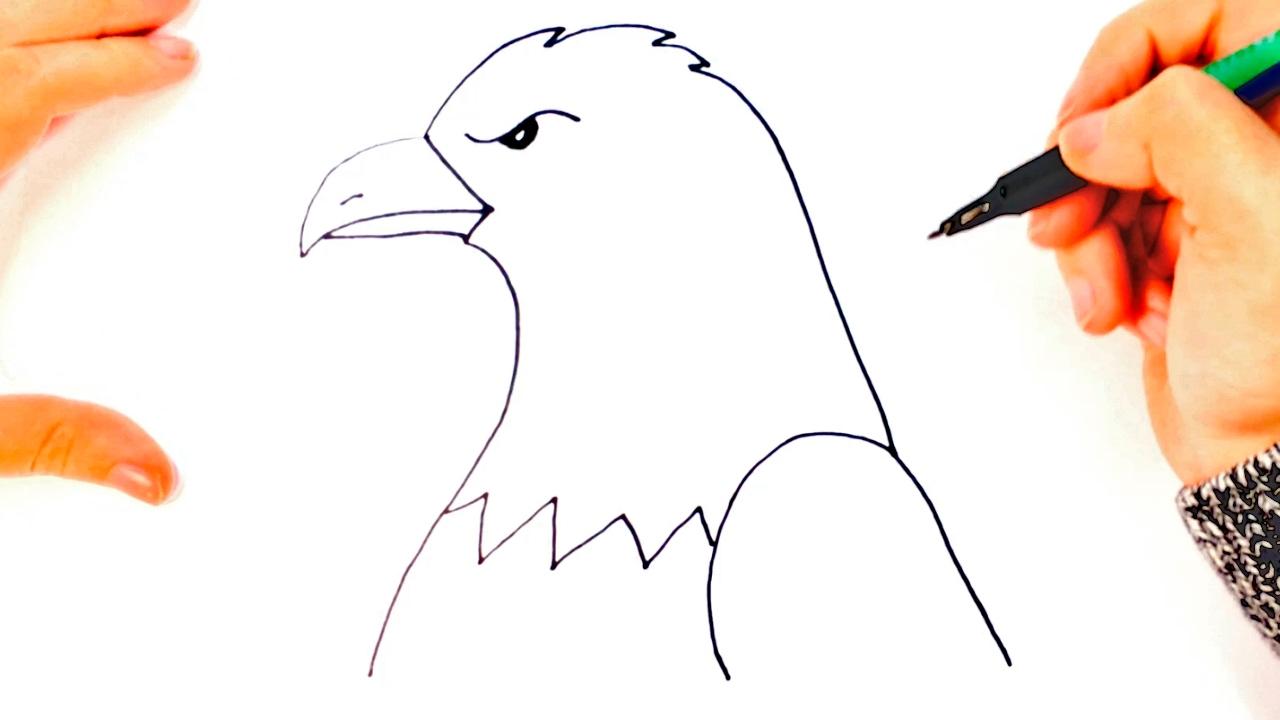 Cómo dibujar un Águila paso a paso  Dibujo fácil de Águila, dibujos de Sencillo, como dibujar Sencillo paso a paso