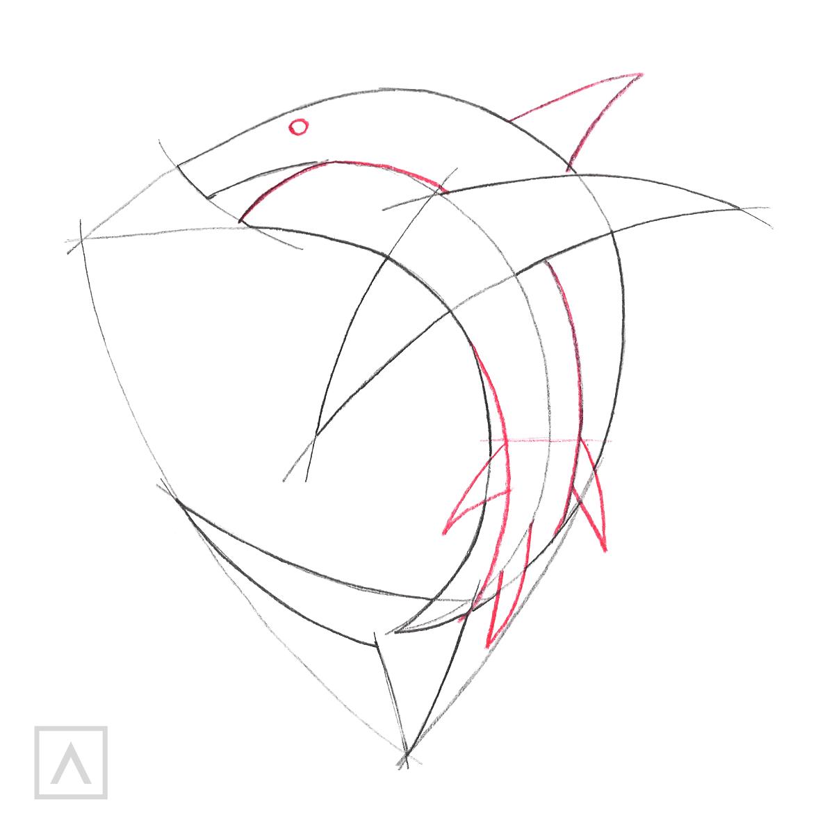 Cómo dibujar un tiburón - Paso 3