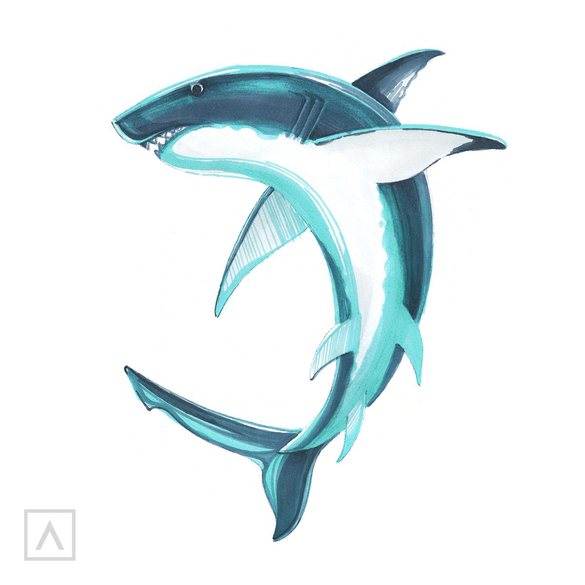 Cómo dibujar un tiburón - Paso 6